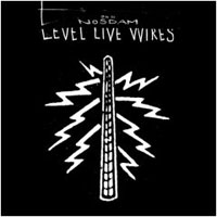 Odd Nosdam -   	Level Live Wires