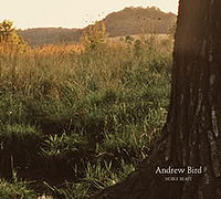 Andrew Bird - Noble Beast